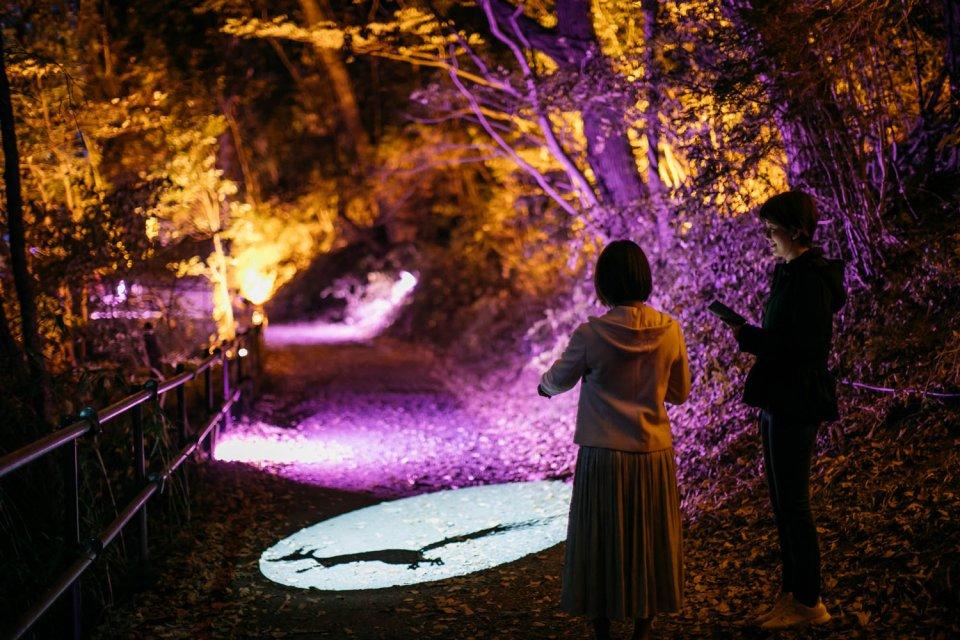 Moominvalley_Park_Winter_Magic_Path_Decorations