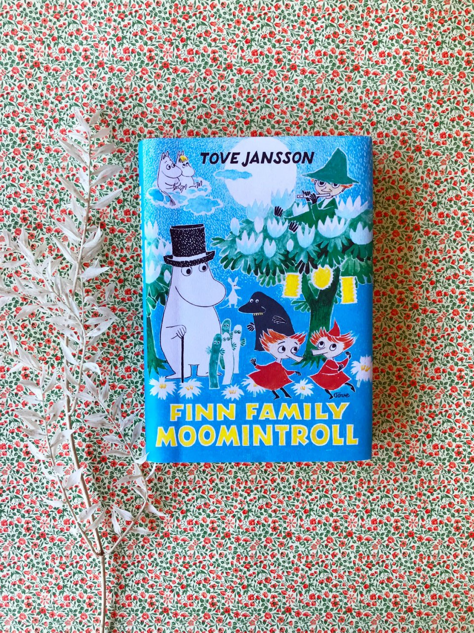 moomin spring